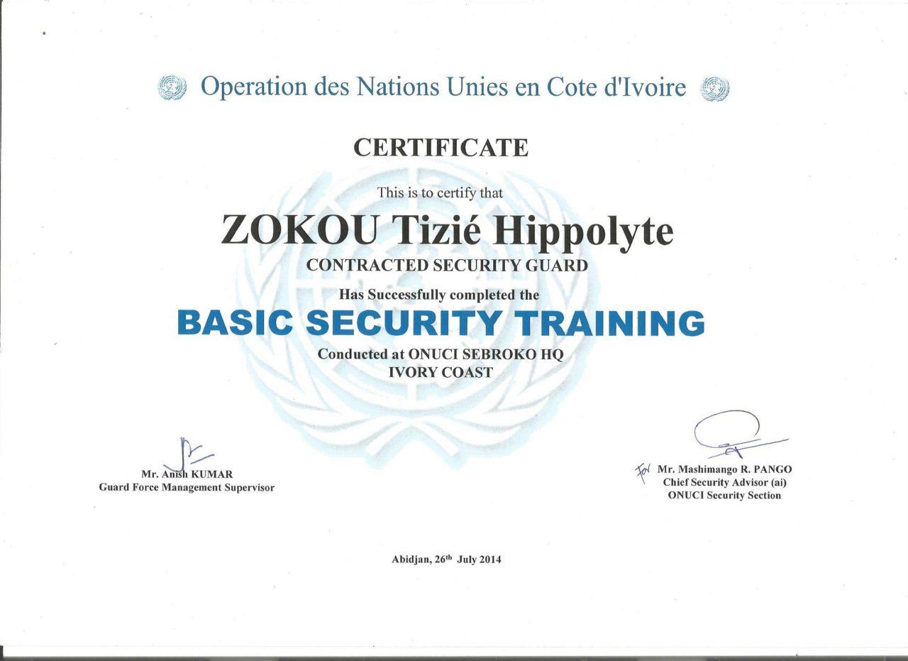hippo_basic_security.jpg