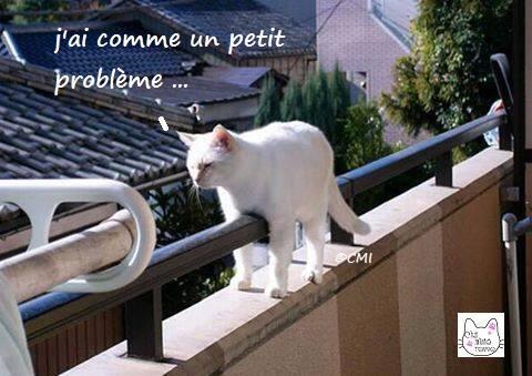 jai_comme_un_petit_probleme.jpg
