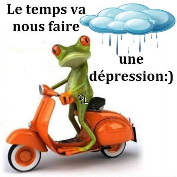 pluie_depression_grenouille.jpg