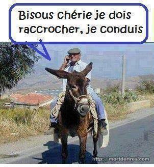 bourricot.jpg