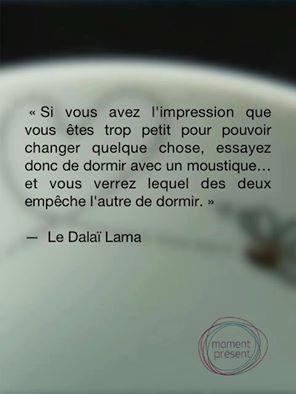 citation_dalai_lama.jpg