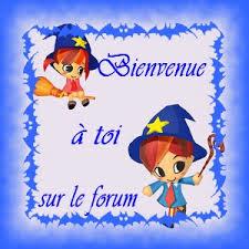 bienvenue_sur_le_forum.png