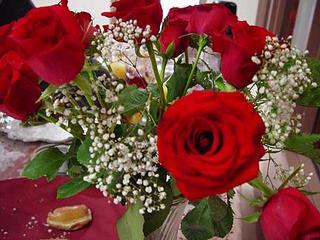 rosesx.jpg