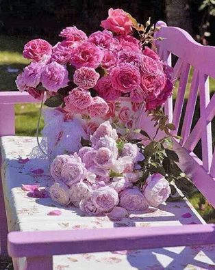 bouquet_de_rosesw_sur_chaise.jpg