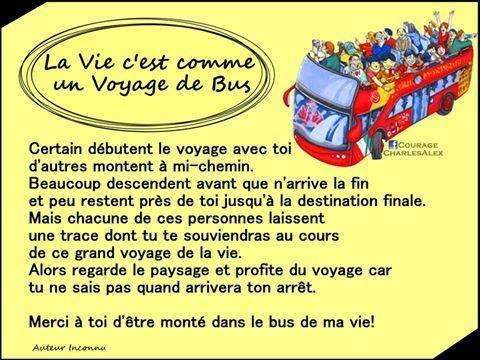 la_vie_cest_comme....jpg