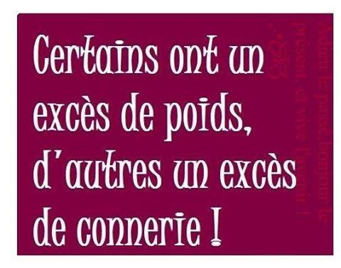 exces_de_poids_exces_de_connerie.jpg